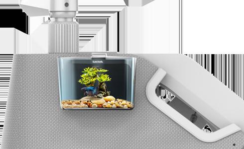 Stress-Free Fish Tank